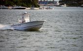 Small White Fising Boat