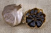 Black Garlic