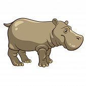 stock photo of hippopotamus  - Cartoon Hippopotamus isolated on a white background vector illustration - JPG