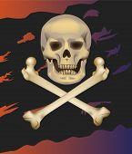 Skull and crossbones .  Jolly Roger  .