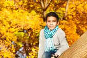Boy Sit On The Tree In Park