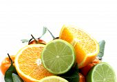 pic of clementine-orange  - different types of citrus fruits  - JPG
