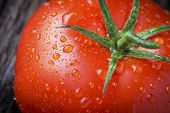 Organic Tomato With Water Droplets Macro