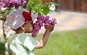 Baby girl sniffing lilac.