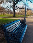 Bench at Hyde Park