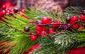 Christmas berries and spruce branch with cones