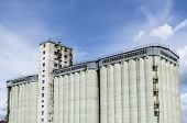 Concrete silo building