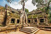 Classical picture of Ta Prohm Temple, Angkor, Cambodia