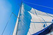 Modern Yacht Main Sail.