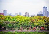 Landscape view point of metropolis Osaka city
