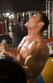 Bodybuilder Working Out At Gym