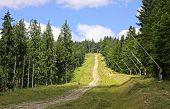 Bukovel Ski Resort In Summer, Carpathians, Ukraine