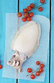 picture of devilfish  - raw cuttlefish and chery tomatoes  on the blue board - JPG