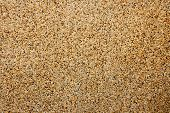 Sand Stone Texture For Outdoor Floor