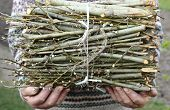 picture of circumcision  - old man in the hands of a bunch of chopped branches - JPG