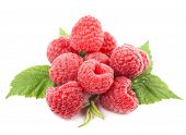 macro of red raspberry