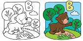 Little teddy bear coloring book. Alphabet B