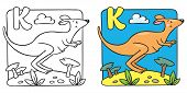 image of kangaroo  - Coloring picture or coloring book of little funny jumping kangaroo - JPG