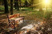 stock photo of banquette  - Dawn in the autumn park - JPG