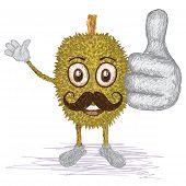 Durian Fruit Mustache