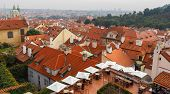 Old Tiled Roofs Of Prague, Czech Republic.