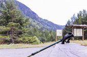 Hiking Pole