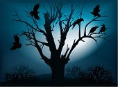 Black ravens on the tree