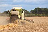 Combine Harvestor Working In Field