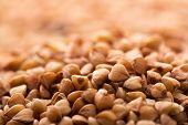 picture of buckwheat  - Heap of buckwheat - JPG