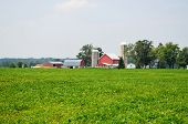 picture of hazy  - Barn with silo and surrounding farmland on a hazy summer day - JPG