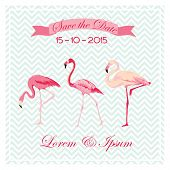 stock photo of pink flamingos  - Save the Date  - JPG