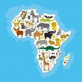 picture of hippopotamus  - Animal Africa - JPG