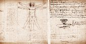 picture of leonardo da vinci  - Photo of the Vitruvian Man by Leonardo Da Vinci - JPG