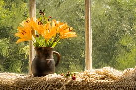 image of asiatic lily  - Asiatic Hybrids orange lilies bouquet on a window sill in a sunny rainy day - JPG
