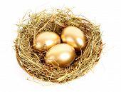 Three golden hen's eggs in the grassy nest isolated on white