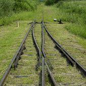 Bieszczadska wood railway, Wola Michowa, Poland