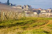 Pouilly, Burgundy, France