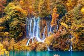 beautiful waterfall in forest, autumn