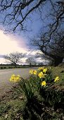 Baddesley Clinton Estate Warwickshire Route Of The Heart Of England Way Long Distance Footpath