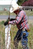 Cowboy Fixing Fence
