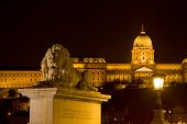 Budapest at night. Chain bridge and Buda Castle