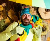 Hipster Wear Knitted Hat And Gloves Expect Rainy Weather Hold Umbrella. Man Bearded Lay On Wooden Ba poster