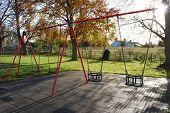 Sunny Autumn Swings