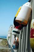Buoys hanging on a white picket fence
