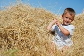 cute young boy in haystack