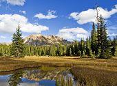 die Wildnis Sümpfen in Washington Durchgang, Norden cascades national park