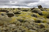 The pillow-like tops of the moss covered lava fields near Kirkjubaerjarklaustur in the south of Icel