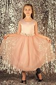 Little Girl In Fashionable Dress, Prom. Fashion Model On Silver Background, Beauty. Fashion And Beau poster