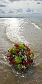 Flowers in the gentile surf of the North Sea, shot in back lighting