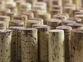 Wine Cork Group